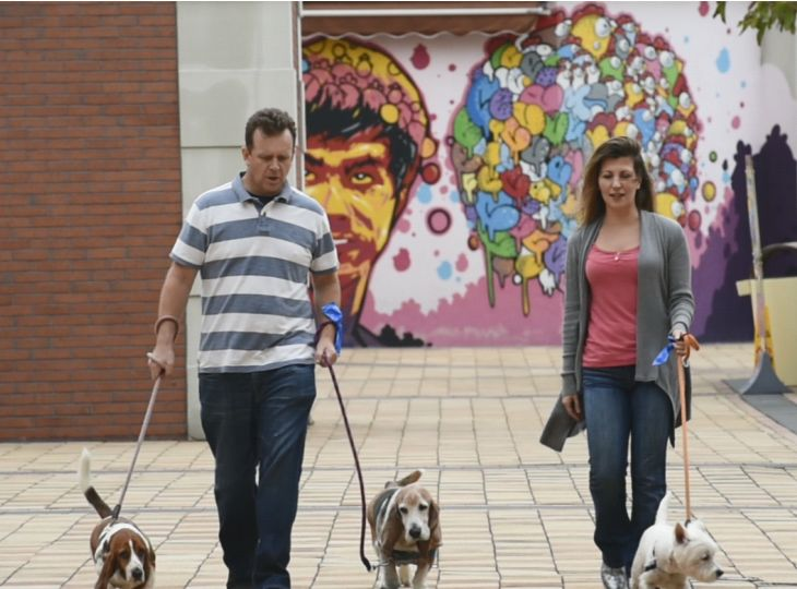 Richard&Tierney&dogs_Case 2_4